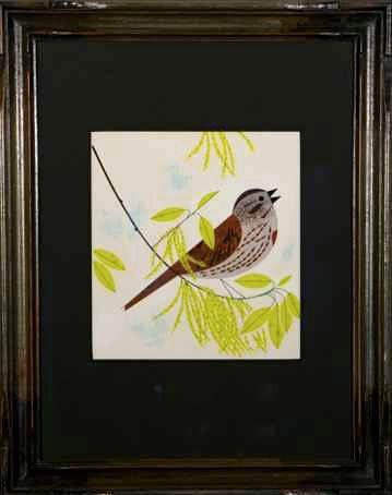 Sing Spring / Song Sparrow